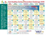 "Take the 12 Days of ""Fit-mas"" Challenge!"